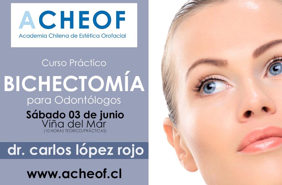 CURSO-BICHECTOMIA-chile